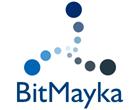 3D Printing Service BitMayka Shop
